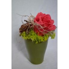 Preparovaná ruža v keramickom zelenom kvetináči