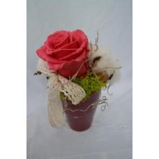Preparovaná ruža v keramickom bordovom kvetináči